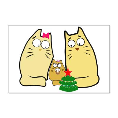 Наклейка (стикер) Кошачья семья