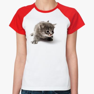 Женская футболка реглан Любопытный котенок