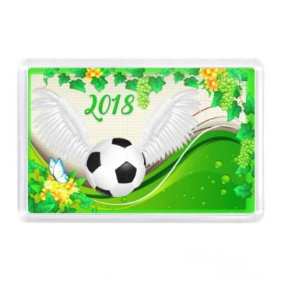 Магнит Лето футбола 2018