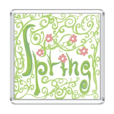 Магнит   Весна