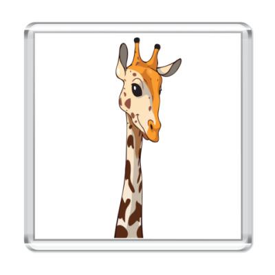 Магнит Жираф