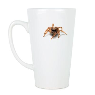 Чашка Латте Паук