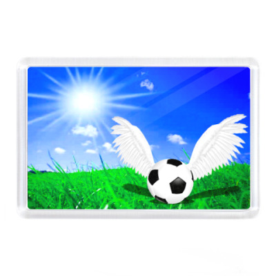 Магнит Солнечный футбол