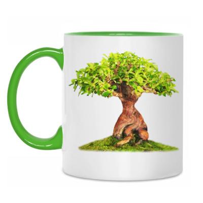 Кружка Дерево