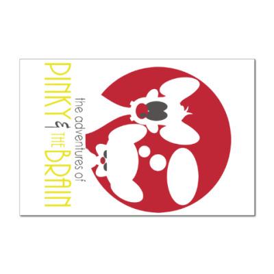 Наклейка (стикер) Приключения Пинки и Брэйна