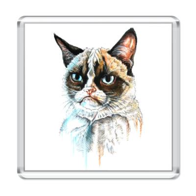 Магнит Грустный кот