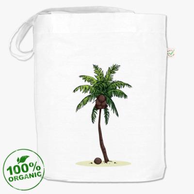 Сумка Кокосовая пальма