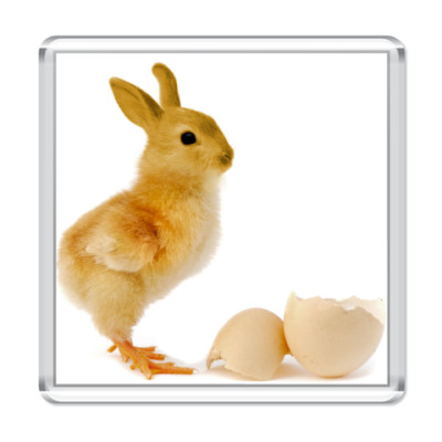 Магнит Курица-кролик