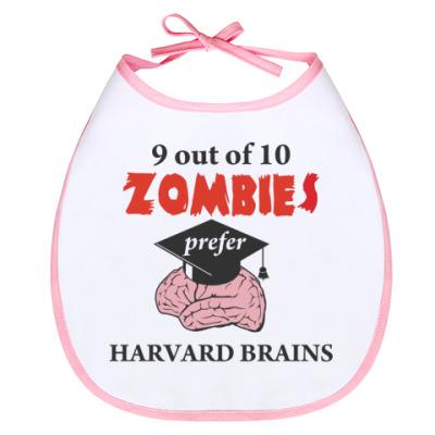 Слюнявчик Harvard brains