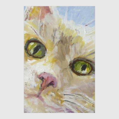 Постер Нежный котик