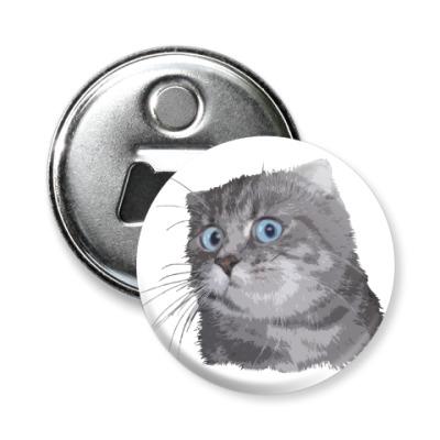 Магнит-открывашка Кот