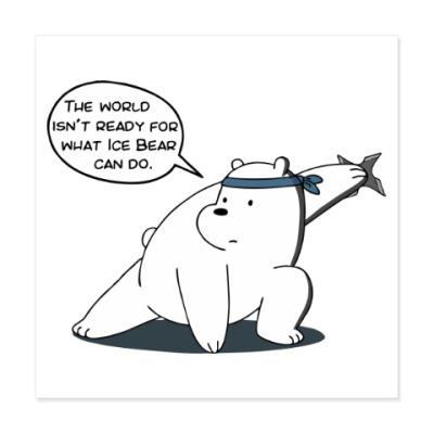 Виниловые наклейки Ice Bear