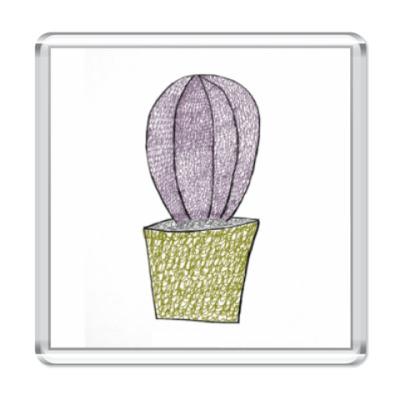 Магнит кактус