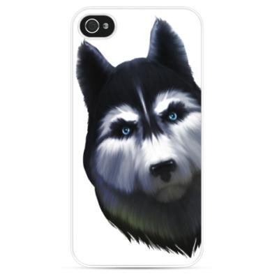 Чехол для iPhone Сибирский хаски