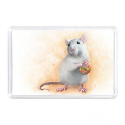 Магнит Декоративная крыса - рисунок