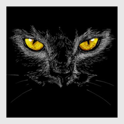 Постер Черный кот