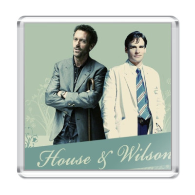 Магнит House & Wilson