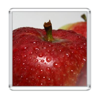 Магнит яблоко в каплях воды