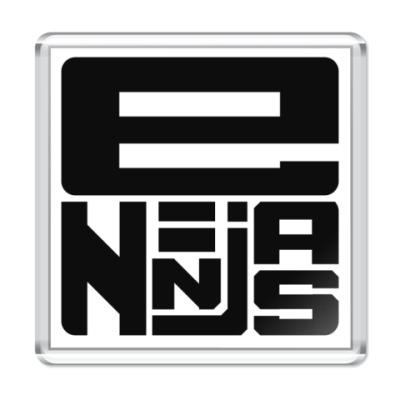 Магнит E-Ninjas
