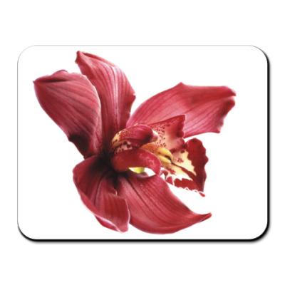 Коврик для мыши Орхидея бордо