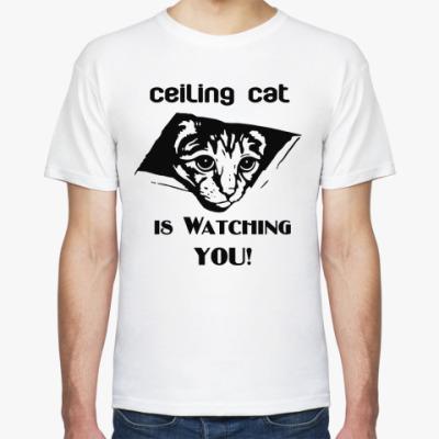 Футболка Кот наблюдает за тобой!