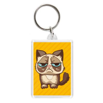 Угрюмый кот Тард - Grumpy Cat