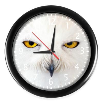 Настенные часы Нежная Сова