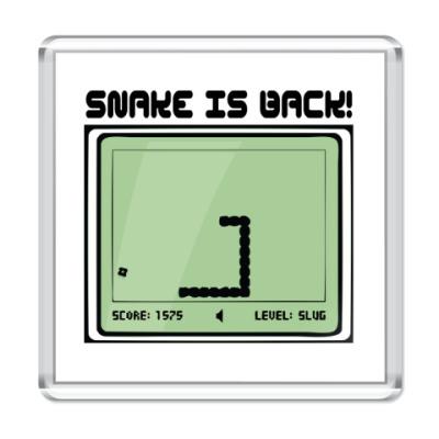Магнит Ретро-принт SNAKE IS BACK!