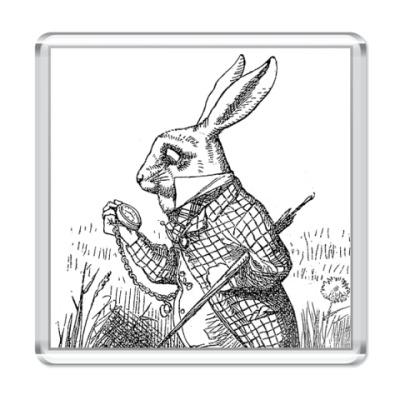 Магнит  'Белый Кролик'