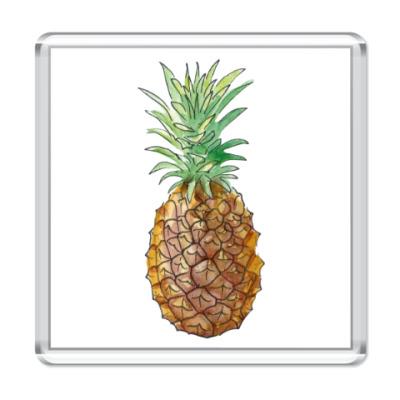 Магнит Pineapple