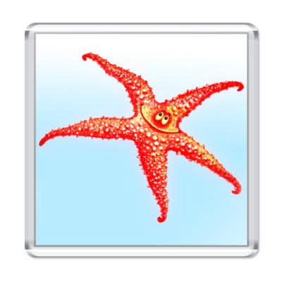 Магнит  Звезда