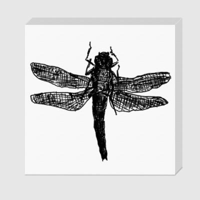 Холст Dragonfly