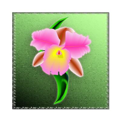 Наклейка (стикер) Орхидея