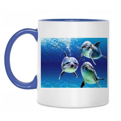 Кружка Delphins