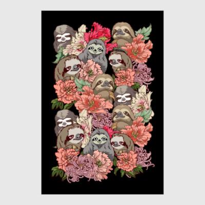Постер Ленивцы в цветах