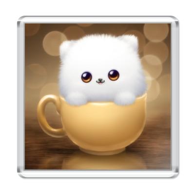 Магнит  Cat in Cup