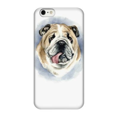 Чехол для iPhone 6/6s английский бульдог
