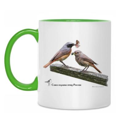 Кружка Обыкновенные горихвостки