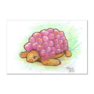 Наклейка (стикер) Черепаха