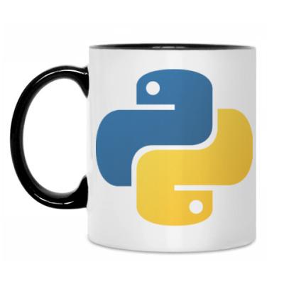 Кружка Python