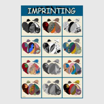 Постер Импринтинг/Imprinting