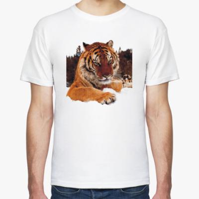 Футболка Тигр в лесу