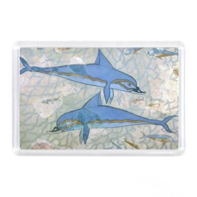 Магнит Дельфины