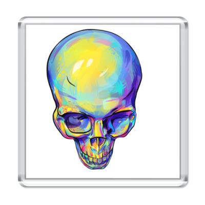 Магнит  череп