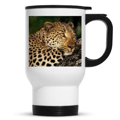 Мечтательный леопард