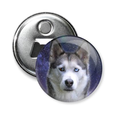 Магнит-открывашка Снежный пес