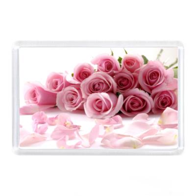 Магнит Розы.