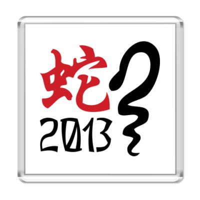 Магнит Новогодний принт Змея-2013 год