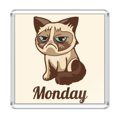 Магнит Угрюмый кот Тард - Grumpy Cat