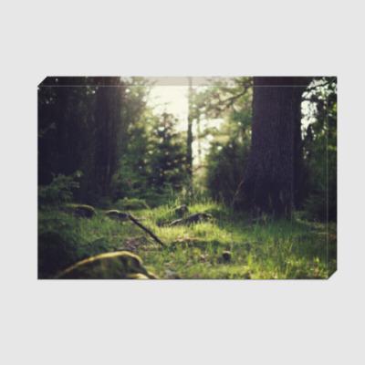 Холст Лесной пейзаж